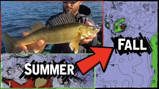 FIND and CATCH Fall Transition Walleyes
