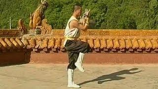 Shaolin 7-stars kung fu (qi xing quan)
