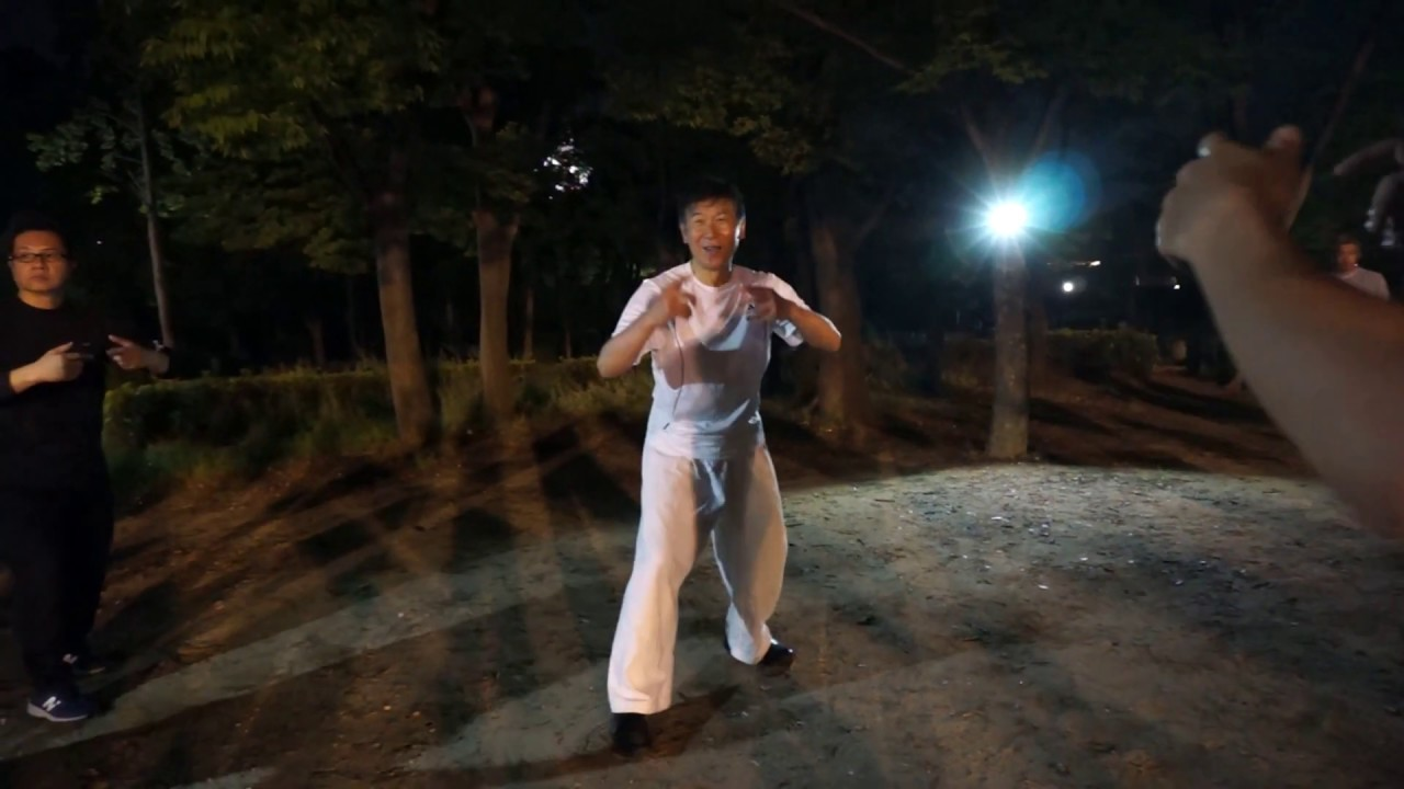 発力(発勁)と螺旋(ローシェン)・・太気拳至誠塾