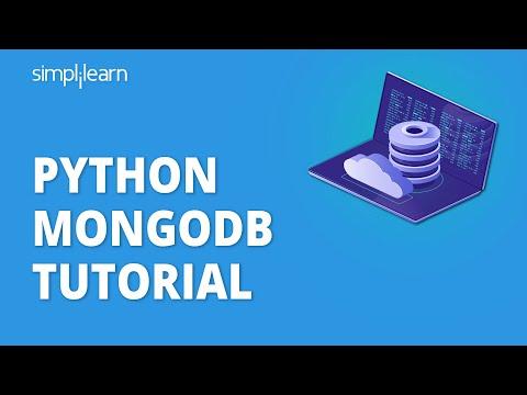 The Ultimate Guide on Python MongoDB