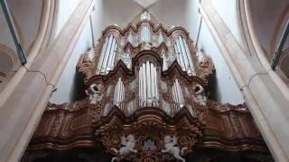 De Jong & De Jong - BWV 49/1, Johann Sebastian Bach