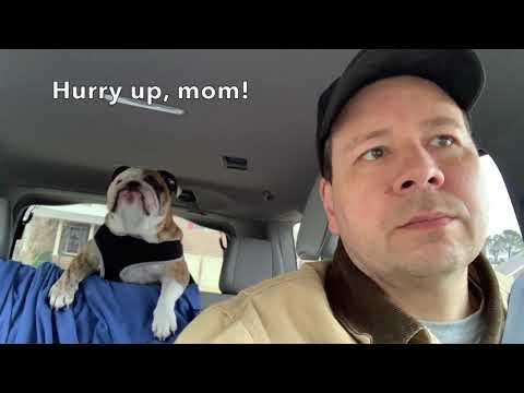 Reuben the Bulldog: Sunday
