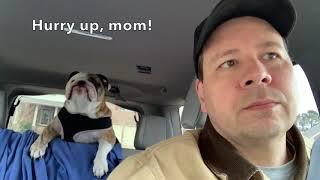 reuben-the-bulldog-sunday