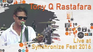 Video Tony Q live at SynchronizeFest - 30 Oktober 2016 download MP3, 3GP, MP4, WEBM, AVI, FLV Maret 2018