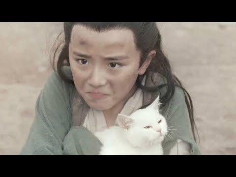 小乞丐救下一只流浪猫,意外发现它是九尾灵猫,一部奇幻爱情电影