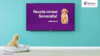 Soneran TV-mainos: Äly-TV ilman Wifiä on älytön (2016)