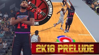 What I Expect From NBA 2K18's Prelude! NBA 2K17 Pro Am Gameplay!