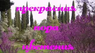 Смотреть видео абхазия в апреле