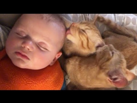2 Minutes of Best Funny Baby Videos