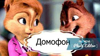 Клип Элвин и бурундуки-Домофон