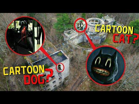 ВЫ НЕ ПОВЕРИТЕ МОЙ ДРОН СНЯЛ РЕАЛЬНОГО CARTOON CAT И CARTOON DOG *они существуют*