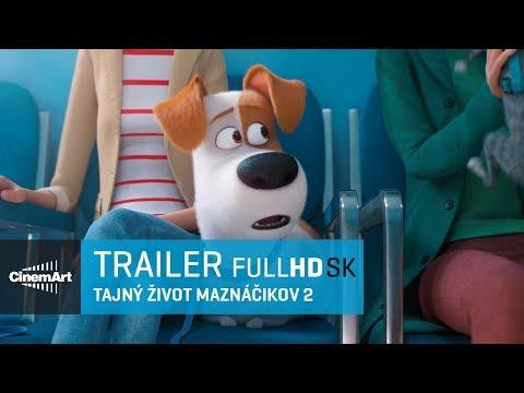 bd96065aa Tajný život maznáčikov 2 ( 2019 )/ oficiálny HD trailer # 1 [SK DAB ] -  YouTube