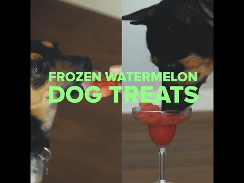 PetSmart Kitchen: Frozen Watermelon Treats