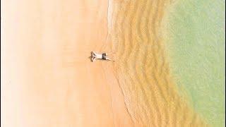 🏖️🐚☀️ Les plus belles plages de Côte-d'Ivoire🇨🇮 (the most beautiful beaches of Côte-d'Ivoire)