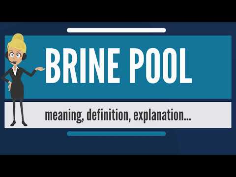 What is BRINE POOL? What does BRINE POOL mean? BRINE POOL meaning, definition & explanation
