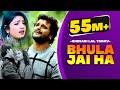 नए अंदाज में #khesari Lal Yadav और #Rani का एक और सुपरहिट धमाका - जा जा जान भुला जइह - Sad Song New