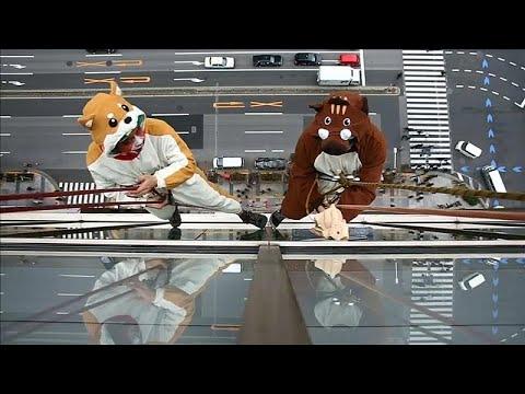 شاهد: منظفو زجاج يرتدون ملابسا تحاكي حيوانات -زودياك-  - نشر قبل 4 ساعة