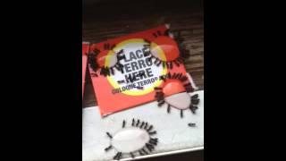 Getting rid of piss ants!!!