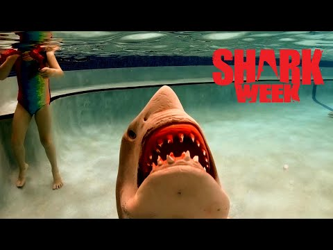 Jurassic Shark Attack during Shark Week
