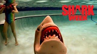 Jurassic Shark Attack During Shark Week