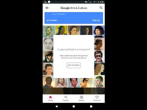 """Access """"IS YOUR PORTRAIT IN A MUSEUM?"""" from anywhere 