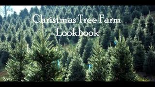 Christmas Tree Farm Lookbook ft. Emily! Thumbnail