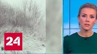 """""""Погода 24"""": экс-ураган Герварт смещается в сторону Урала - Россия 24"""