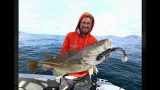 Gambar cover Mikkelvik Team Eisele Sea-Fishing auf 70°