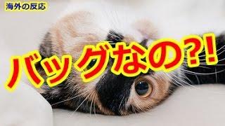 【海外の反応】日本人が手掛けたリアルで可愛すぎるバッグに海外が仰天「これは欲しい!」 thumbnail
