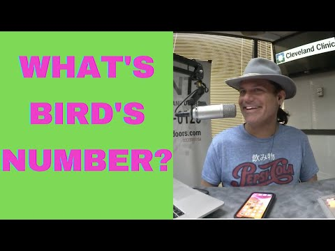 Whats-Jbirds-Number-7-28-21