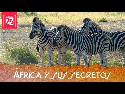 África y sus secretos