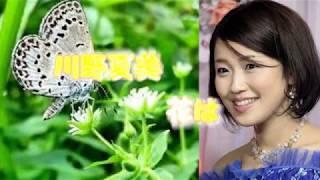 川野夏美 - 花はこべ