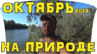 Рыбалка Одесса ● Выезд на реку в начале Октября ● Рыбалка на Турунчуке ● А точнее отдых!