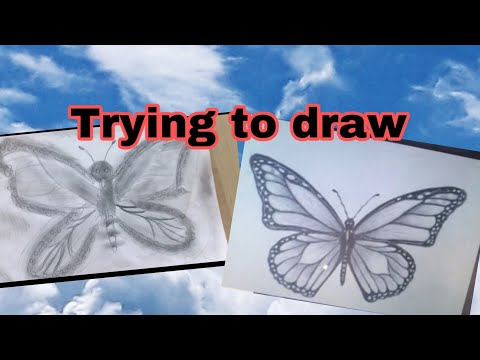 Trying to draw a butterfly 🦋