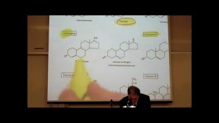 PHARMACOLOGY; ACTIONS & USES OF CORTICOSTEROIDS by Professor Fink