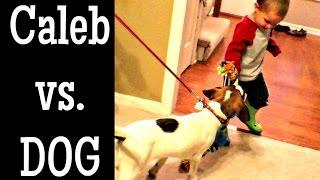 CALEB VS. DOG
