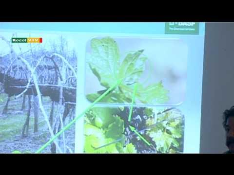 Téli gazdaesték növényvédelem BASF
