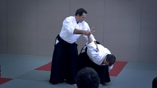 Aikido: Christian Tissier Paris Dec 2014