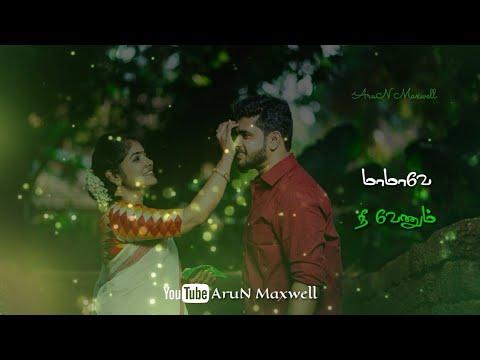 Whatsapp Status Tamil Video Adi Illa Sethi Solli Song Whatsapp Status Arun Maxwell Tamil Status