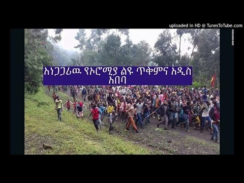 ethiopia ዉይይት፤ አነጋጋሪዉ የኦሮሚያ ልዩ ጥቅምና አዲስ አበባ