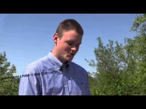 Why do Montanans love clean air?