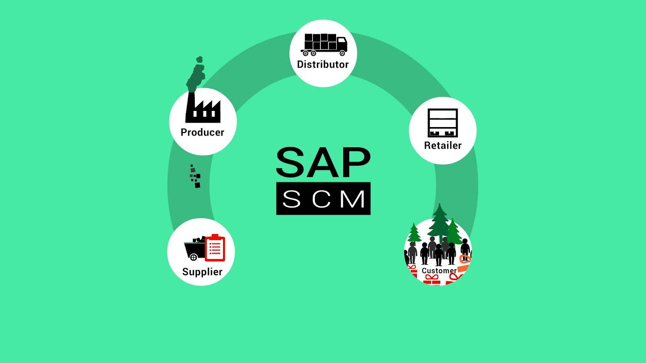 wiley s sap scm components of sap scm [ 1280 x 720 Pixel ]