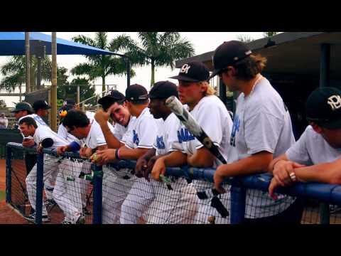 Sharks - Miami Dade College Baseball Team