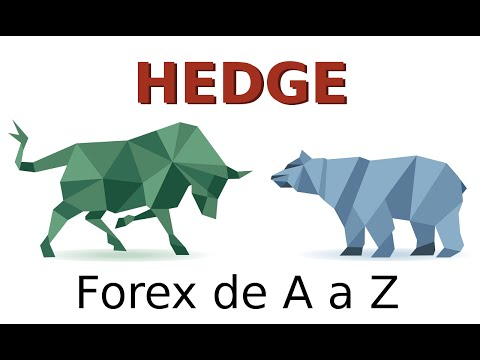 Hedge e Hedge Funds - O que são? E no Forex?