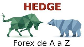 Hedge e Hedge Funds - O que são? E no Forex?