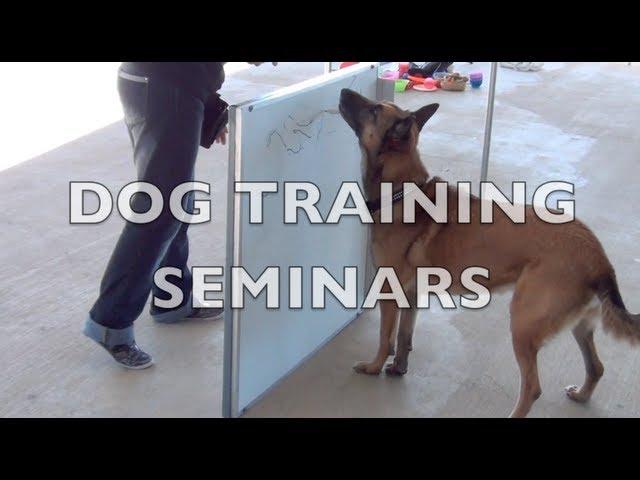 Upcoming dog training seminars- dog training