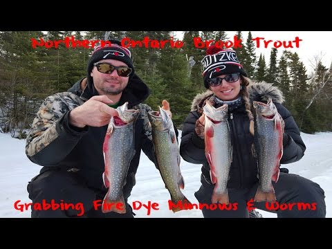 Ice Fishing For Big Ontario Brook Trout