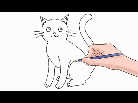 How To Draw The Cat