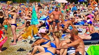 Геленджик. ПОГОДА 7 августа 2019г. Пляж битком! Идеальное море! Голубая Бухта!