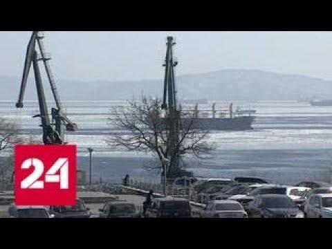 Резиденты свободный порт Владивосток создадут в Приморье две тысячи рабочих мест - Россия 24